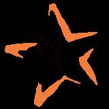 STAR BASKETBALL ACADEMY Logo